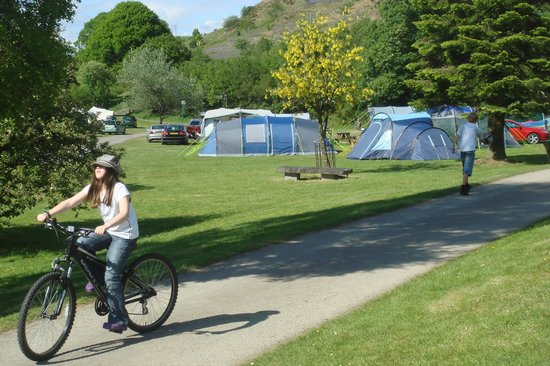 The Woodlands Caravan Park: Tent pitches with Electric Hook up