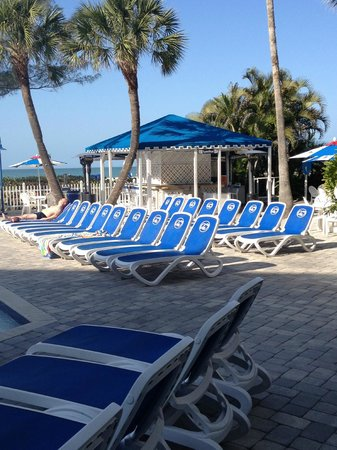 Guy Harvey Outpost, a TradeWinds Beach Resort:                   the chaise lounges at the family pool