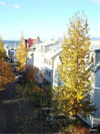 Guesthouse Sunna: Our street Þórsgata