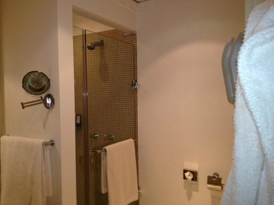 Hilton Ras Al Khaimah Resort & Spa:                                                                         Walk in shower