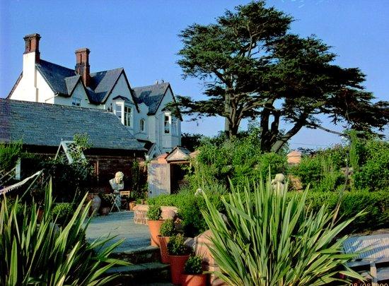 Wollaston Lodge Bed & Breakfast: Wollaston in the sunshine