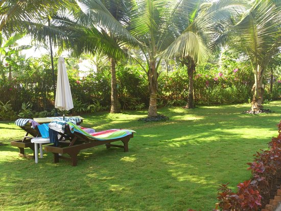 Santana Beach Resort:                   garden and sun beds