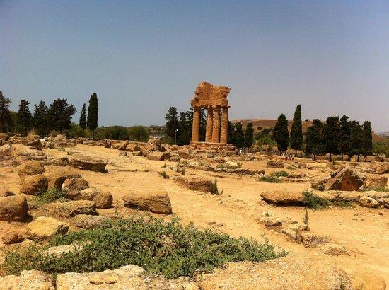 Tempio di Giove Olimpico:                   around the Zeus temple