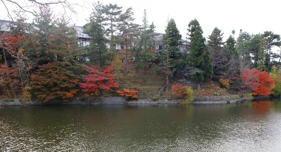 Nara Hotel:                   池越しにクラシックな外観を望む