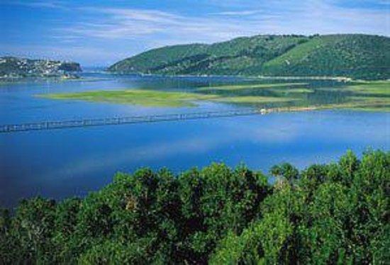 Gecko Transport and Tours - Day Tours: Knysna Lagoon