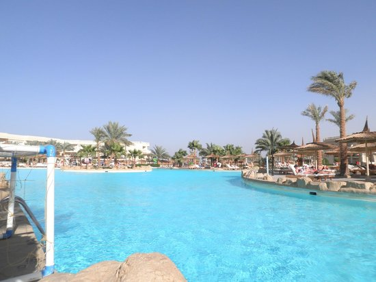 Royal Albatros Moderna Sharm el-Sheikh:                   pool