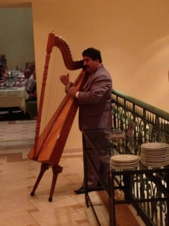 Melia Iguazu Resort & Spa:                   the man playing the harp every night at dinner in the main restaurant. a nice