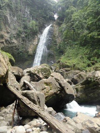 Jungle Bay, Dominica:                   excursion cascade Victoria                 