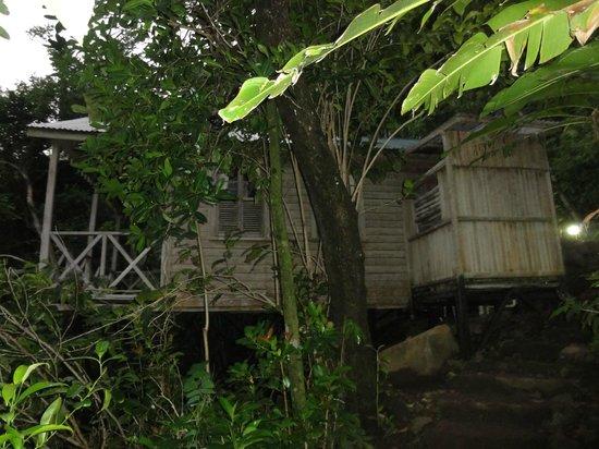 Jungle Bay, Dominica:                   le cottage                 