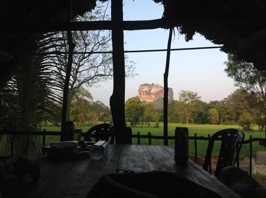 Lakmini Lodge & Restaurant:                   blick vom baumhaus