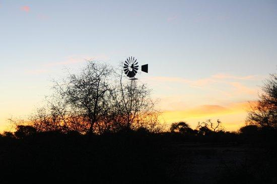 Kuzikus Wildlife Reserve Lodge :                   Sonnenuntergang auf Kuzikus