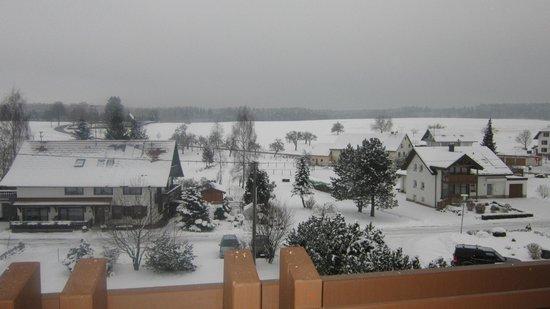 Hotel Sonnhalde:                   uitzicht balkon