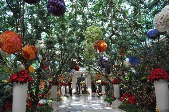 Encore At Wynn  Las Vegas:                   Christmas decorations in the hotel