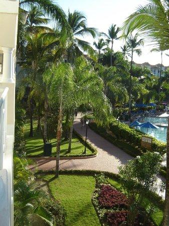Barcelo Punta Cana:                   végétation