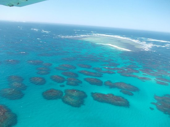 Geraldton Air Charter:                   Views of the Abrolhos Islands