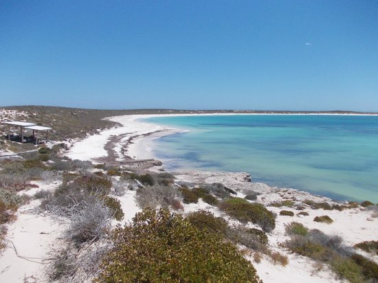 Geraldton Air Charter:                   Turtle Bay on East Wallabi Island, the Abrolhos Islands, WA