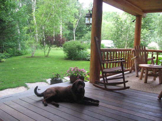 Steep Acres Farm Bed & Breakfast: A view from the porch