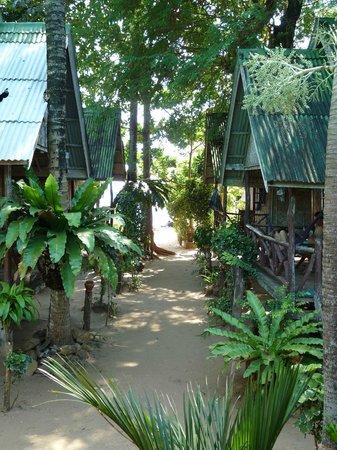 Kantiang Bay View Resort:                   Blick von der Terasse