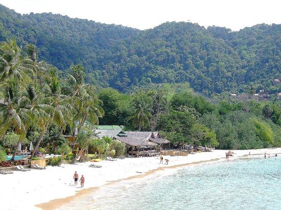 Kantiang Bay View Resort:                   Blick vom Strand auf das Resort