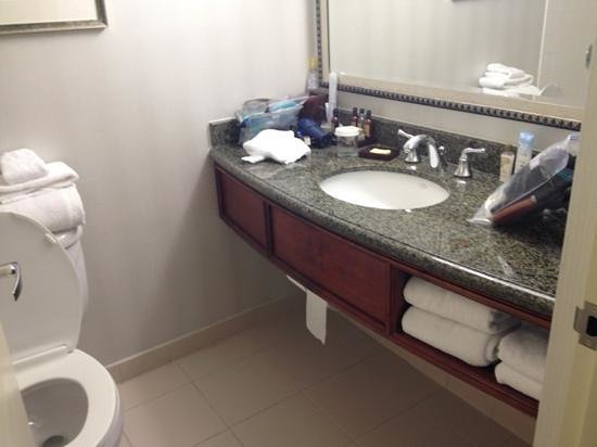 Miami Airport Marriott:                   bathroom
