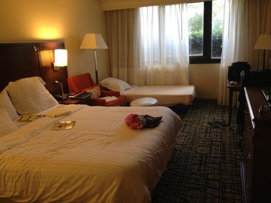 Miami Airport Marriott:                   room with king size bed and  roll away