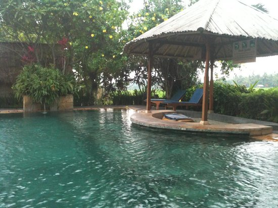 Tegal Sari:                   Pool