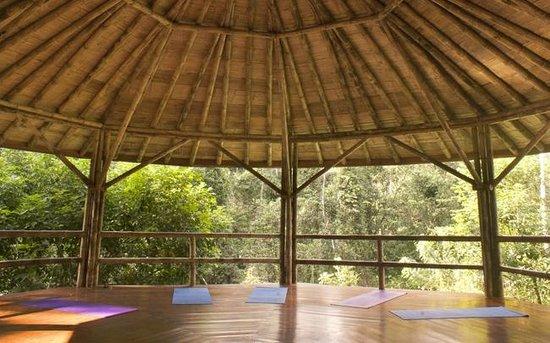 Finca Luna Nueva Lodge: Awesome place