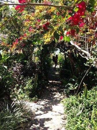 La Casa Rosa Hotel:                   Hospedaje entre la naturaleza