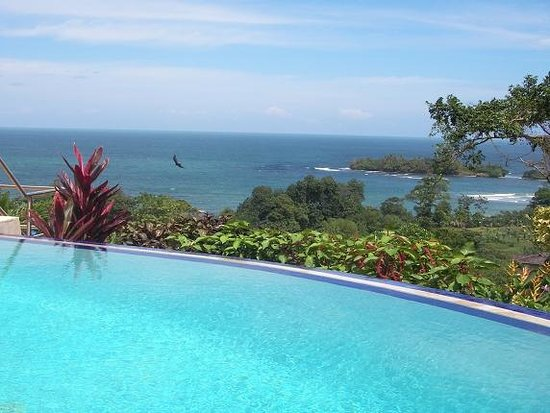 Red Frog Beach Island Resort Certified For Its: Foto De Red Frog Beach Island Resort & Spa, Isla