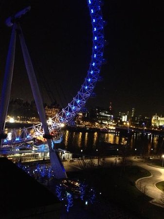 Premier Inn London County Hall Hotel:                   view!