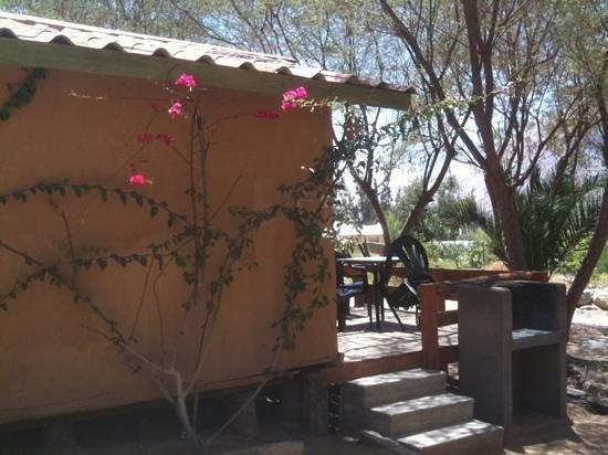 Hosteria Los Datiles :                   bungalow