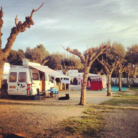 Camping Resort-Bungalow Park Mas Patoxas: Acampada