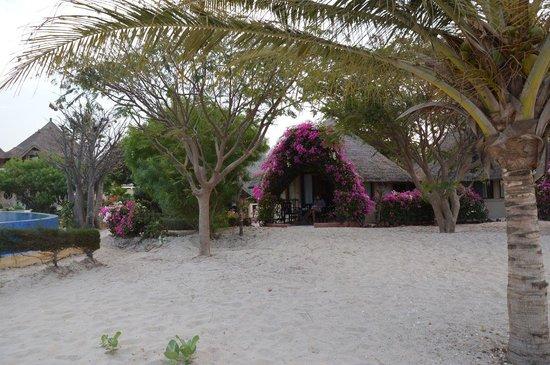 Lodge du Delta Niominka :                   Chambre