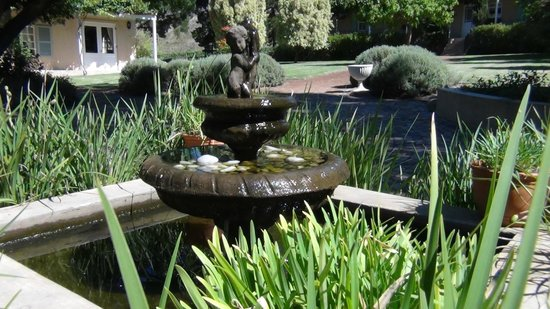 Blue Gum Country Estate:                   Garden fountain