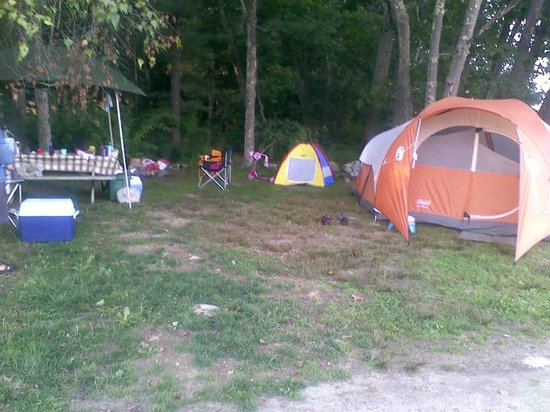 Recompence Shore Campground at Wolfe's Neck Farm 사진