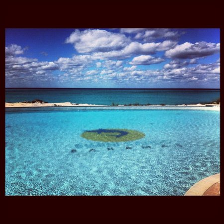 Bimini Sands Resort and Marina:                   Infinity Pool