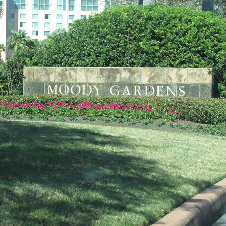 Moody Gardens Hotel Spa & Convention Center:                   Hotel Grounds