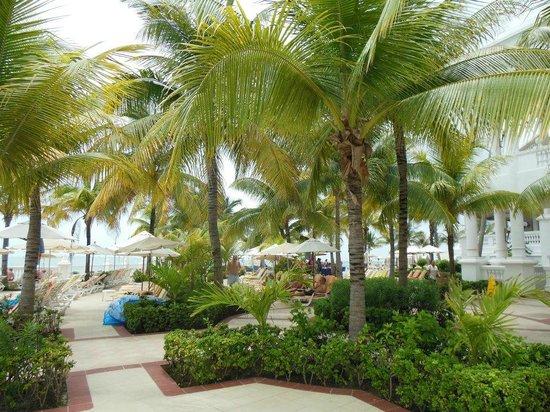 Hotel Riu Palace Las Americas:                   entre las piscinas