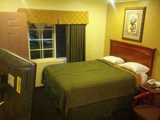 Motel Mediteran:                   The entire room.