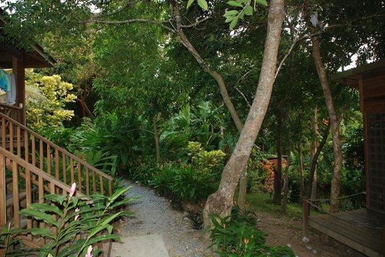 Villagio Verde:                   Área verde del Villagio