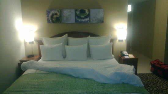 Savannah Marriott Riverfront:                   Room