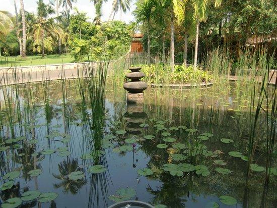 Serene Pavilions:                   Hotelbereich