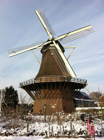 Photo of Tourist Attraction Rembrandt Molen van Sloten - Amsterdam / Kuiperijmuseum at Akersluis 10, Sloten 1066 EZ, Netherlands