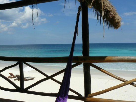 Luv Tulum:                   View from our huge balcony at Luv, ocean front king room. 1/2 was shaded & 1/2