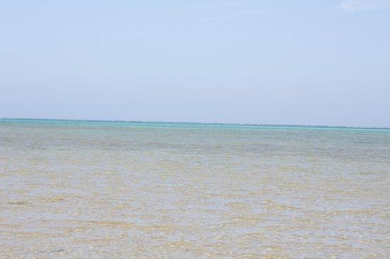 Moon Resort Marsa Alam:                   il mare con la barriera corallina al fondo