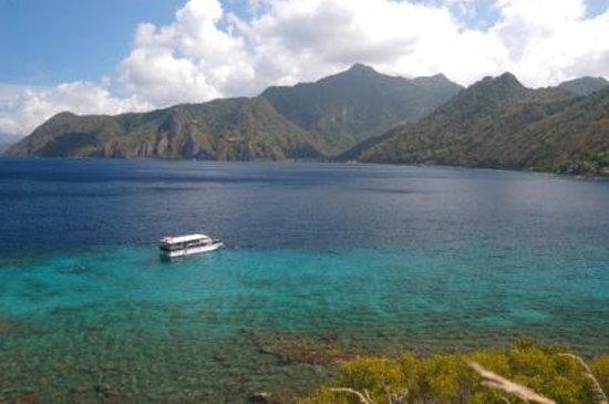 Dive Dominica Photo