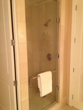 Mokara Hotel and Spa:                   Shower