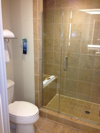 Gaylord Palms Resort & Convention Center:                   Shower