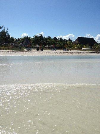 Xaloc Resort:                   Vista desde la playa hacia el hotel
