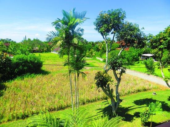 Saren Indah Hotel:                   view